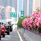 杭州高架桥