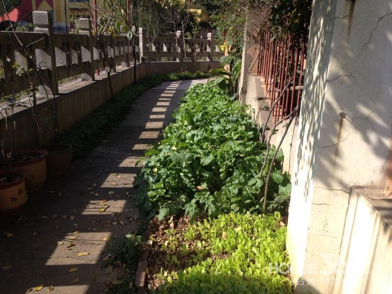 樱驼花园 跃新园 两室一厅 双南送20平米院子阳光好 满五年无税诚