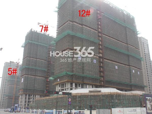 绿城玉兰广场5#、7#、12#楼工程进度图(2015.3)