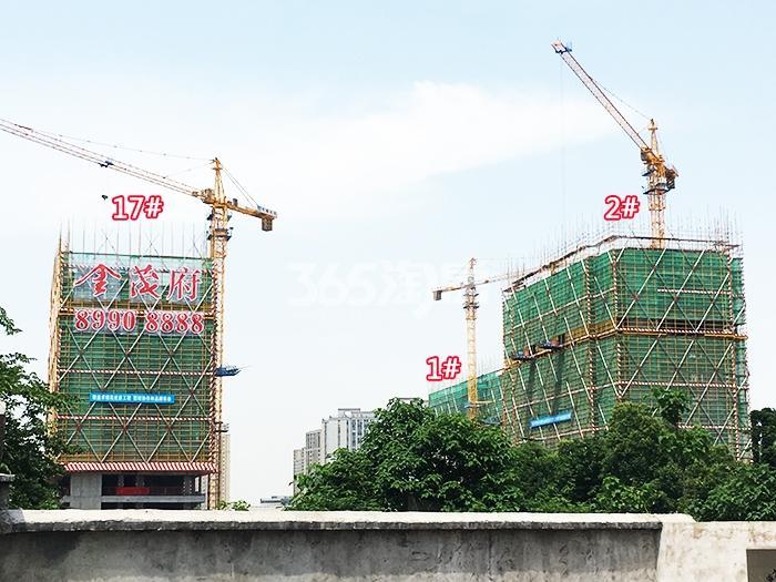 2017年5月底首开杭州金茂府1、2、17号楼实景