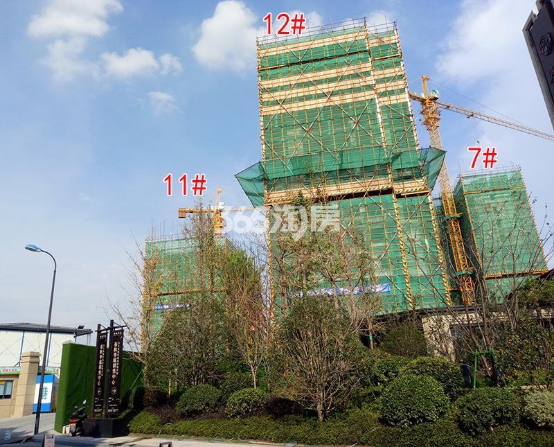2017年8月底招商远洋春秋华庭7、11、12号楼实景