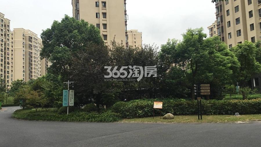 三潭音悦小区绿化景观实景图(2017.8摄)