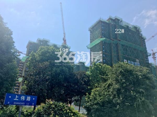 西溪碧桂园一期19、22#楼高层工程实景(2017.9)