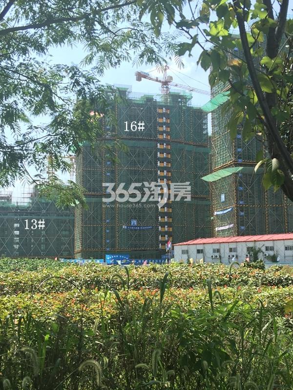 西溪碧桂园二期13、16#楼高层工程实景(2017.9)