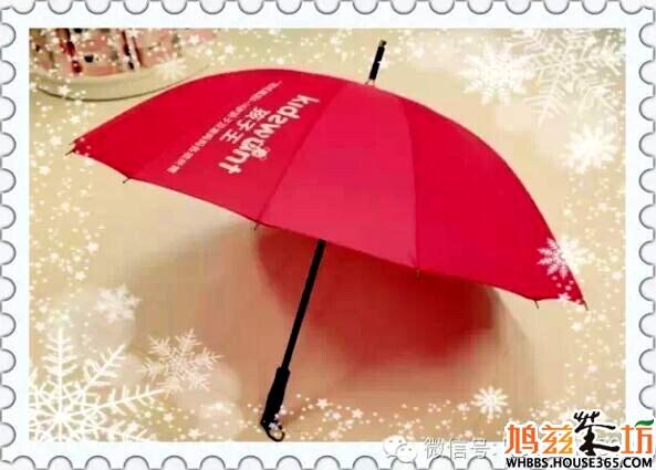 孩子王精美雨伞