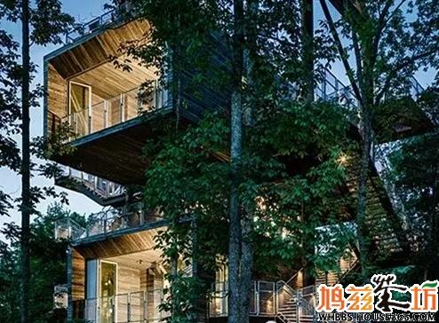 【平湖秋月】让我们去森林里的树屋造梦吧!